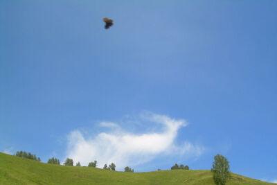 Алтай - 2007