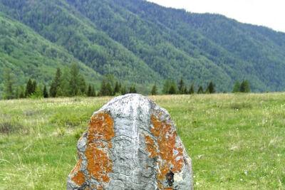 Алтай-2005. Тюнгур